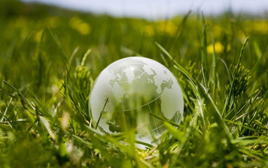 Comment les entreprises peuvent améliorer leurs responsabilités environnementales ?