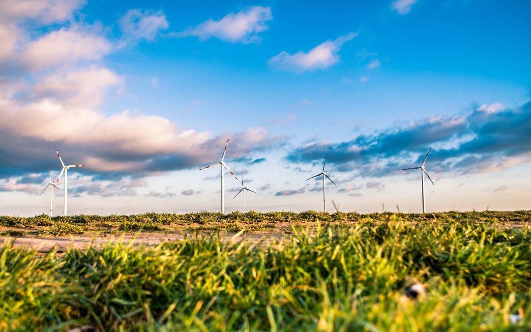 Les business des fournisseurs d'énergie qui ciblent les entreprises